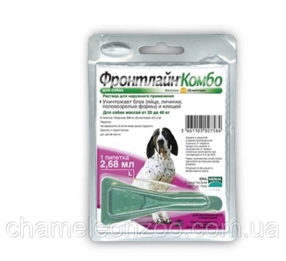 Фронтлайн Комбо для собак 20-40 кг 1 пипетка