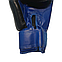 Боксерські рукавички 10 оz комбіновані, чорні BOXER, фото 3