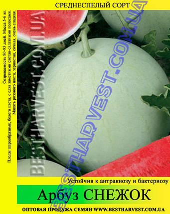 Семена арбуза Снежок 0,5кг, фото 2