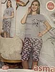 Турецькі піжами з бриджами 46-52, фото 6
