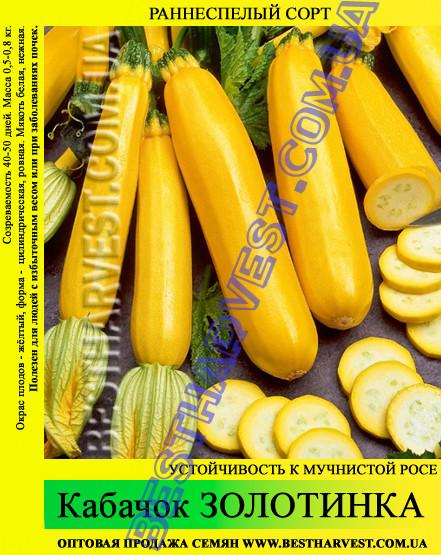 Семена кабачка Золотинка 0,5кг