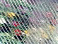 Прозрачный Antifog покрытие  8мм (2,1х12,0 м) Сотовый поликарбонат Polygal (Полигаль)