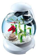Аквариумный набор Tetra Cascade Globe 6.8 л для петушка и золотой рыбки Белый (4004218238909)