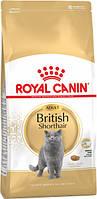 Сухой корм для котов породы британская короткошерстная от 12 месяцев Royal Canin British Shorthair Adult 10 кг