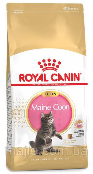 Сухой корм Royal Canin Maine Coon Kitten для котят породы мейн-кун до 15 месяцев 400 г