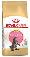 Сухой корм Royal Canin Maine Coon Kitten для котят породы мейн-кун до 15 месяцев 400 г, фото 1