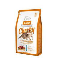Сухий корм Brit Care Cat Cheeky Outdoor Брит Кеа для активних котів і кішок вуличного змісту 2 кг, 132613
