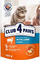 Упаковка вологого корму для дорослих кішок Club 4 Paws з ягнятиною в соусі 100 г х 24 шт