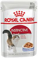 Упаковка влажного корма Royal Canin Instinctive In Jelly в желе для котов от 1 года 85 г