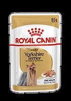 Влажный корм для собак Royal Canin Yorkshire Terrier Adult 0,085 кг