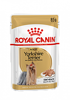 Вологий корм для собак Royal Canin Yorkshire Terrier Adult 0,085 кг