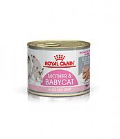 Влажный корм для котят Royal Canin Babycat Instinctive 195 г , фото 1