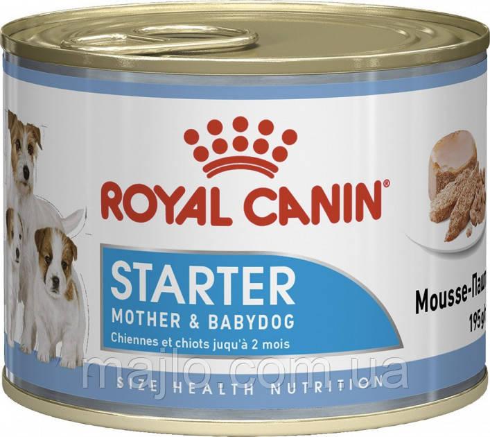 Влажный корм Royal Canin Starter Mousse для беременных собак и щенков всех пород 195 г
