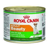 Влажный корм Royal Canin Adult Beauty для взрослых собак малых пород старше 10 месяцев 195 г