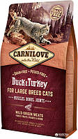 Carnilove Cat Large Breed 2 kg  утка , индейка (д/котов крупных пород) (8595602512768)