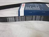 Ремінь генератора Ланос 1.5 з гідропідсилювачем BOSCH, фото 3
