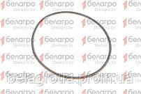 140-150-58-2-2 Кольцо уплотнительное, Беларусь