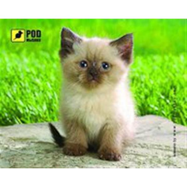 Килимок Podmyshku Сіамський котик