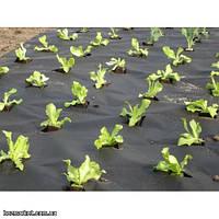 Агроволокно Premium-agro P-50;  3,2м-100м. Агроволокно плотность 50.