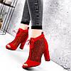 Ботильйони жіночі Tad червоні 3203, фото 5