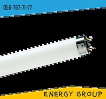 Лампа люминесцентная e.fl T8 G13 15Вт 6400К