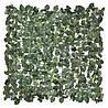 Декоративная зеленая изгородь Engard Молодой вьюнок 150 х 300 см