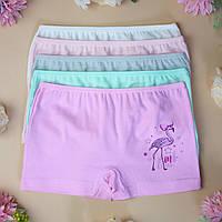 Трусы детские шортки для девочки Nicoletta (возраст: 4-5, 5-6, 6-7 лет)   5 шт.