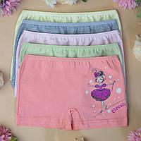 Трусы детские шортики для девочки Nicoletta (возраст: 3, 4-5, 5-6, 6-7 лет)   5 шт.