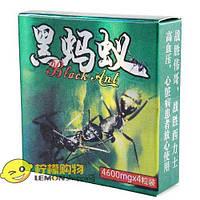 Оригинал!Капсулы для повышения потенции Черный муравей Black Ant 4 капсулы упаковка, фото 1