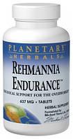Rehmannia для Выносливости, 75 таблеток *