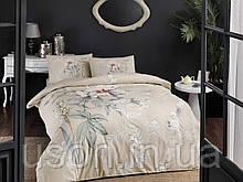 Комплект постельного белья полуторный размер TAC ранфорс Frida Cream