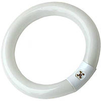Лампа круглая люминисцентная Т9 22W Zhongdi