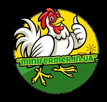 МиниФермер