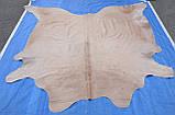 Екзотична шкіра, однотонна кремова шкура корови на підлогу, фото 2