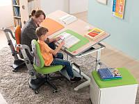 Детский стол Mealux Twins Maple