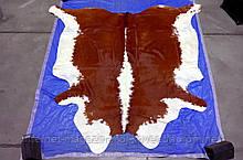 Коричнево біла класична коров'яча шкіра з Аргентини в Україні