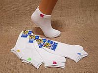 Жіночі короткі шкарпетки з бавовни класика SL КЛ 35-38 білий яблучко
