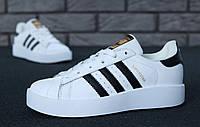 Кроссовки женские Adidas Superstar кроси жіночі адидас суперстар стильные белые кросовки