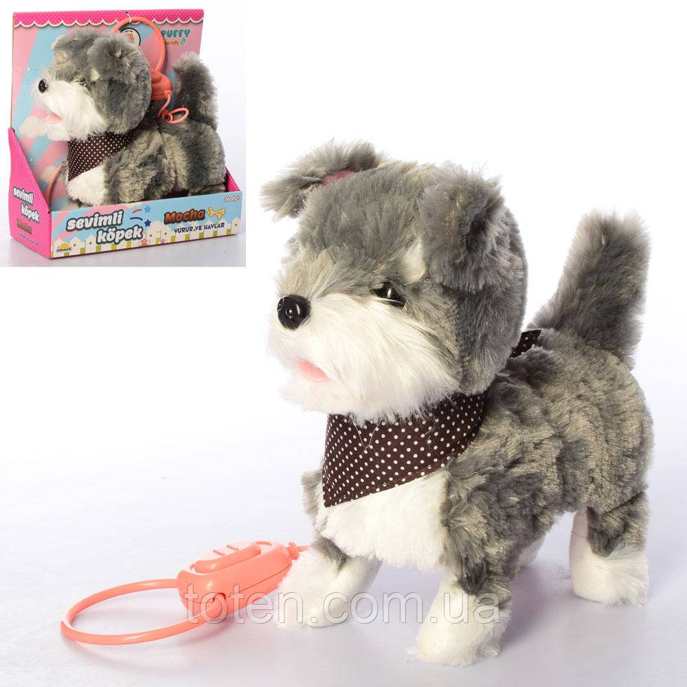 Собака 24 см д/у повідець, MP 2130-2, звук, ходить, рухає головою, ворушить хвостом Т