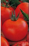 Семена томата Санька 1 гр. Элитный Ряд