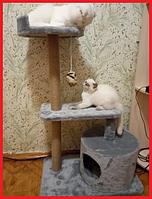 Игровой комплекс дряпка для кошек когтеточка высота 94 см.