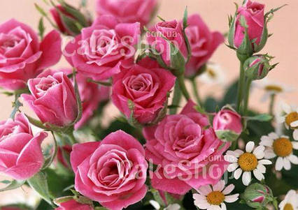Вафельна картинка Троянди 1