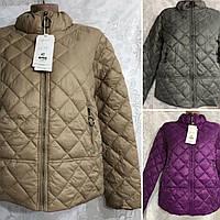Жіноча весняна куртка ОПТ ростовка 027 РІС