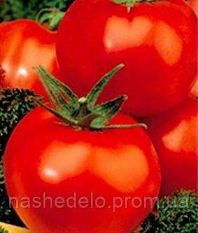 Семена томата Андромеда 1 гр. Элитный Ряд