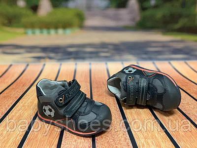 Кожаные демисезонные ботинки для мальчика,Flamingo,р.19-24, мод. 0631
