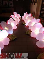 Пневмоцветы (пневмогирлянды) с подсветкой , фото 1