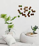 Сота из дерева со мхом /шт 7см фитостена мох в сотах шестигранник из стабилизированного мха