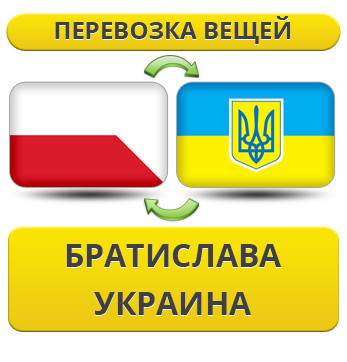 297158357_w640_h640_1.21_bratislav__usluga_rus.jpg