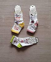 """Шкарпетки дитячі c малюнком розмір 3 (12шт/уп) (3 цв) """"MARI"""" купити недорого від прямого постачальника"""