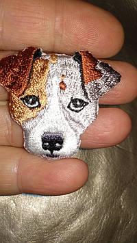 На одежду термо наклейка нашивка апликация отличное качество собака джек рассел